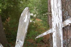 photo101_fence